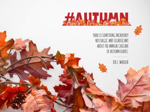 DIY seasons-autumn-quote-mockup