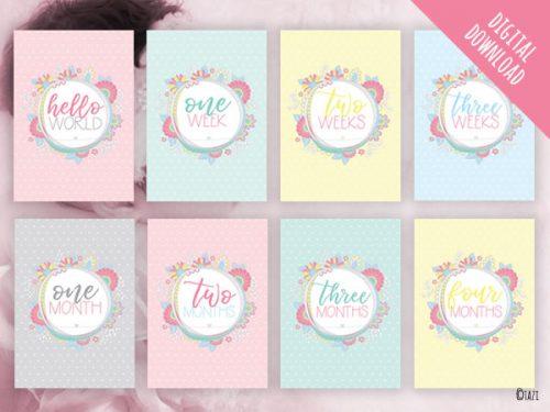 Baby Milestone Cards Pastel Circle